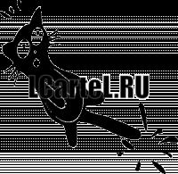 Кот с прищемленным хвостом - На авто # s638