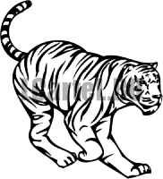 Наклейка Тигра