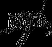 Тигр #621