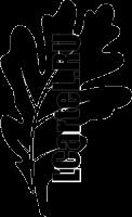 Дубовый лист Трафарет. Декор стен трафаретами листьев дуба.