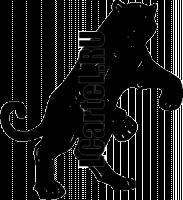 Трафарет Пантеры