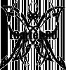 Виниловая наклейка - Бабочка #206