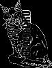 Виниловая наклейка - КОТ #172