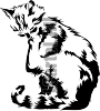 Виниловая наклейка - КОТ #112