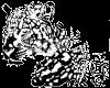 Виниловая наклейка Ягуар