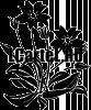 Цветы Шаблоны Трафареты.